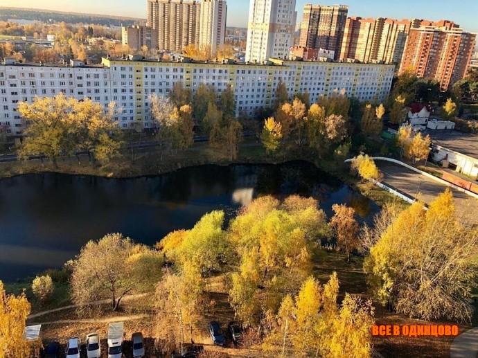 Осенние фото Одинцово